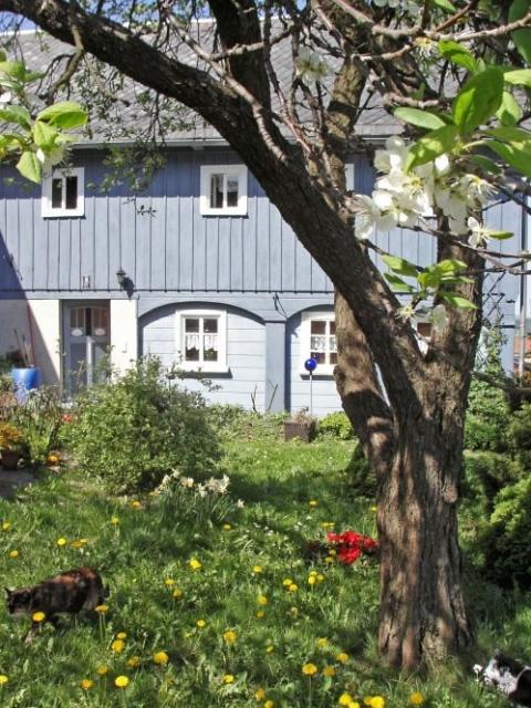 ferienhaus mit hund im oberlausitzer bergland das blaue. Black Bedroom Furniture Sets. Home Design Ideas